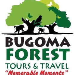 Bugoma Forest Tours and Travel