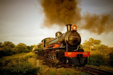 The royal livingstone express