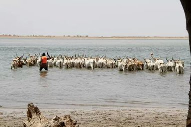 Bush and Villages - a 8 day excursion around Senegal out of Dakar