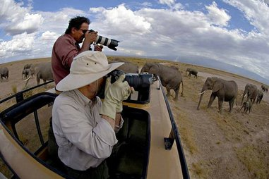 6 daysTanzania Affordable Safari