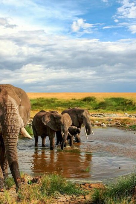 9 Days Kenya Budget Camping Safari Holiday