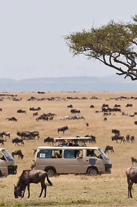 4 Days Lake Nakuru Masai Mara Camping Safari