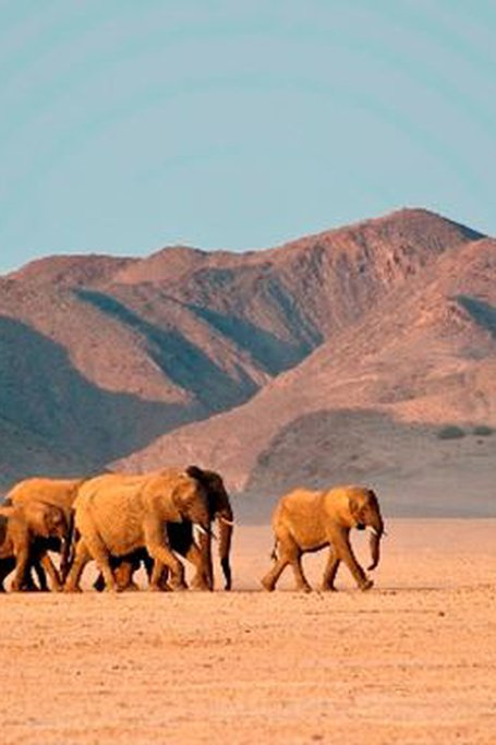 4 Days Damaraland & Skeleton Coast-Namibia(Lodging)