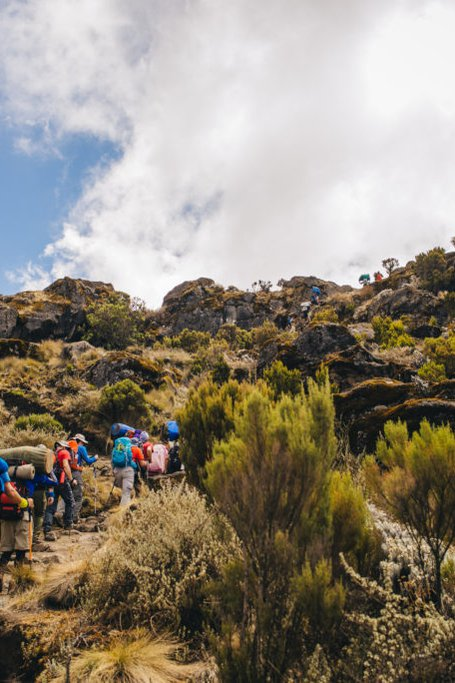 Umbwe Route - 7 Days-mount Kilimanjaro National Park