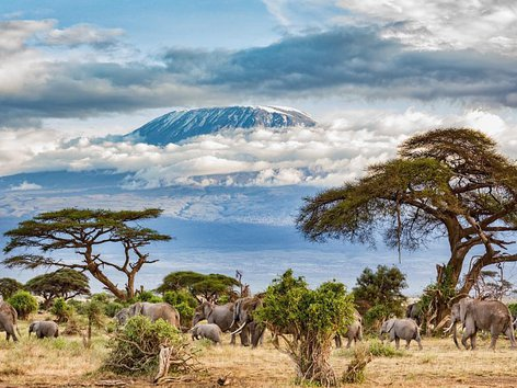 Mount Kilimanjaro (highest In Africa) Machame Route