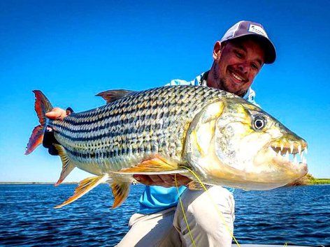 Zambezi River Fishing Excursion