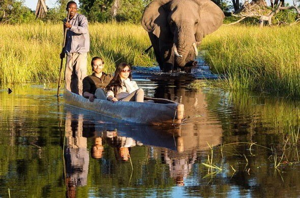 12-days-best-of-botswana-okavango-delta-chobe-1pdbW.jpg